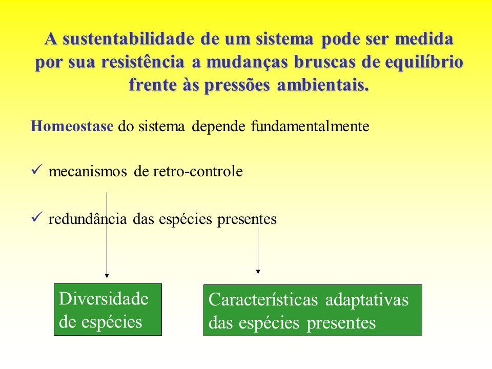 Características adaptativas das espécies presentes