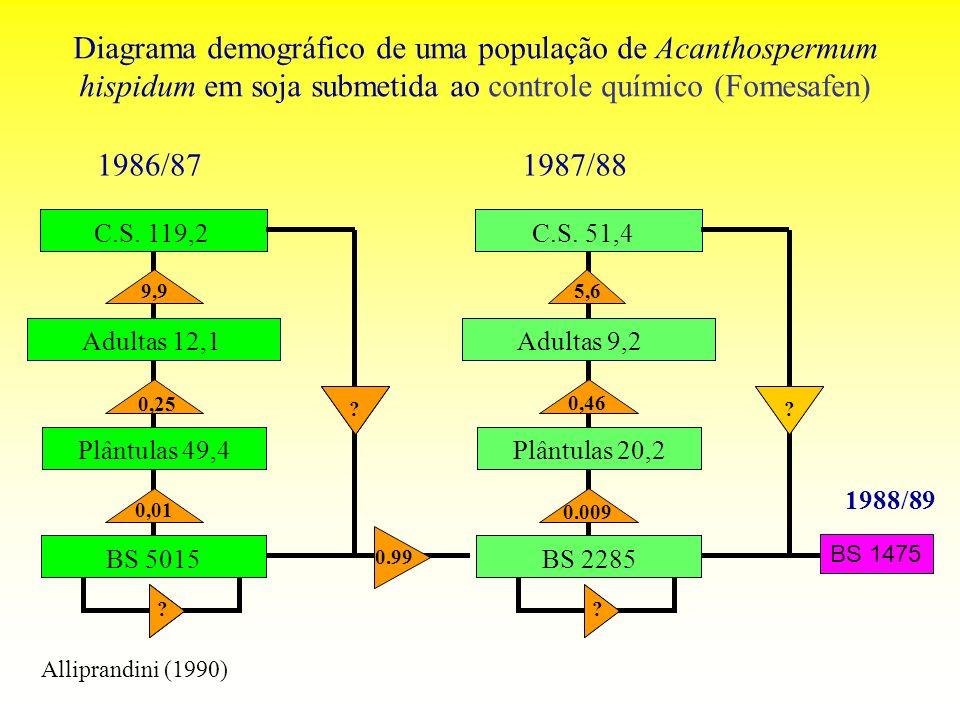 Diagrama demográfico de uma população de Acanthospermum hispidum em soja submetida ao controle químico (Fomesafen)