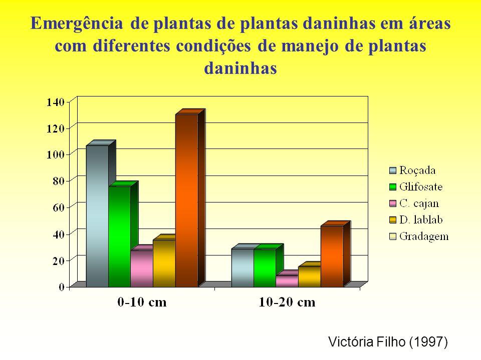 Emergência de plantas de plantas daninhas em áreas com diferentes condições de manejo de plantas daninhas