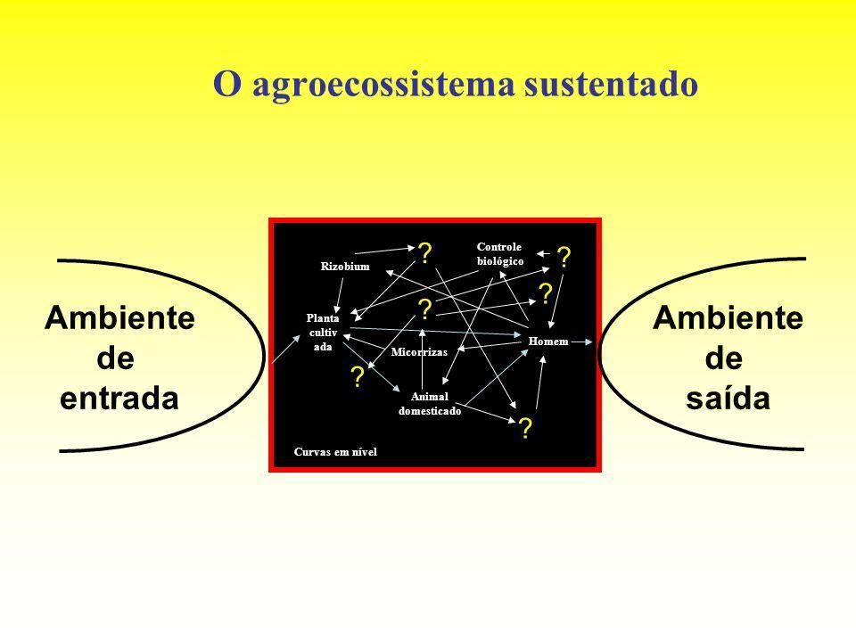 O agroecossistema sustentado