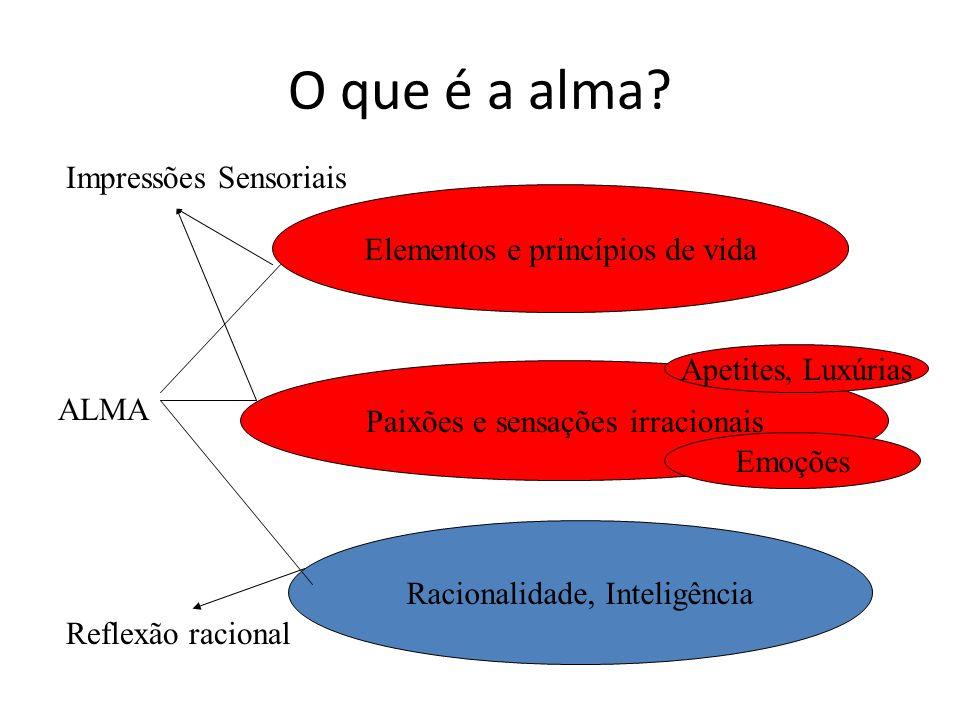 O que é a alma Impressões Sensoriais Elementos e princípios de vida