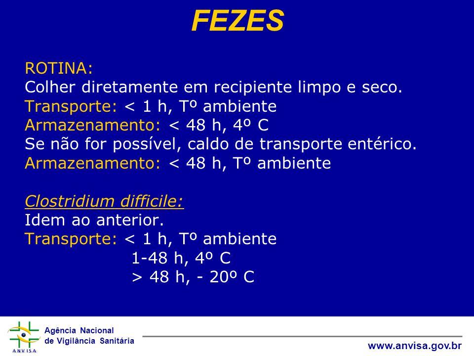 FEZES