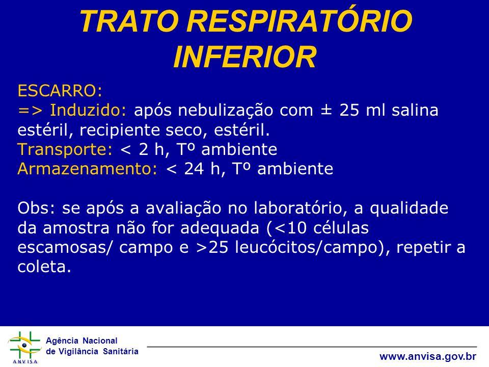 TRATO RESPIRATÓRIO INFERIOR