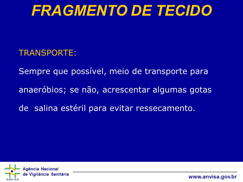 FRAGMENTO DE TECIDO