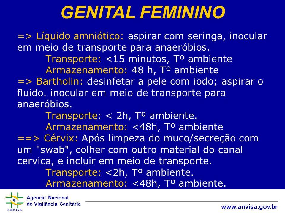 GENITAL FEMININO