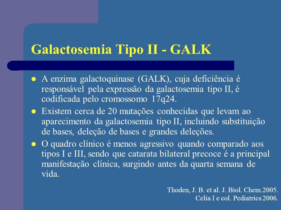 Galactosemia Tipo II - GALK