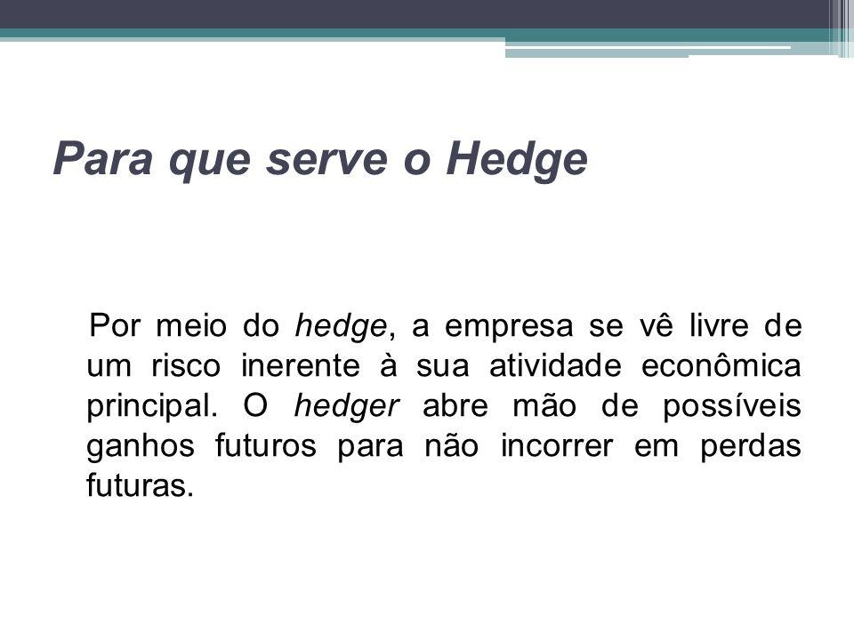 Para que serve o Hedge