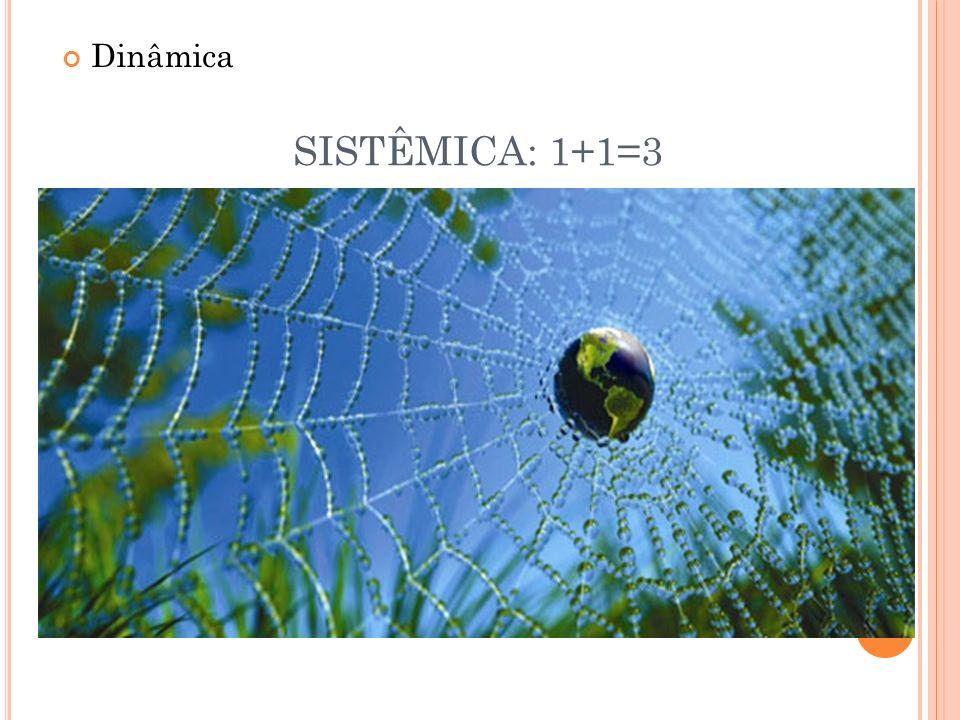 Dinâmica SISTÊMICA: 1+1=3