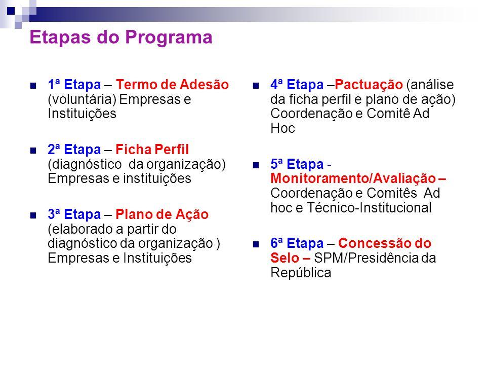 Etapas do Programa 1ª Etapa – Termo de Adesão (voluntária) Empresas e Instituições.