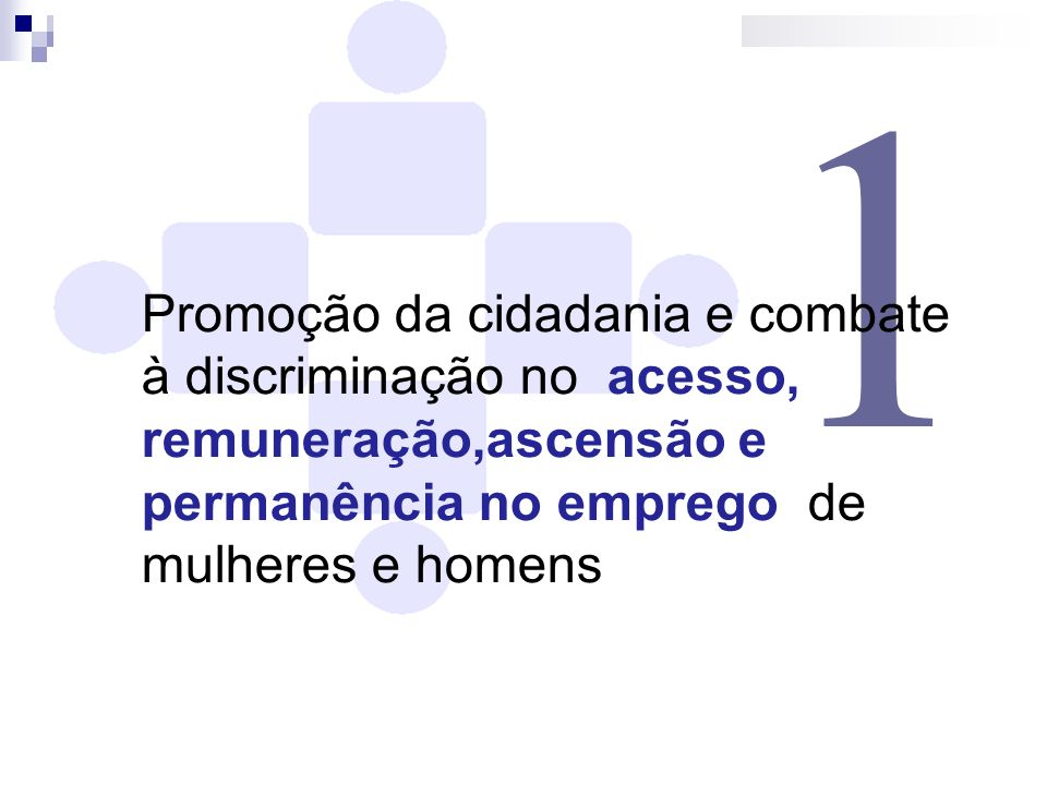 1Promoção da cidadania e combate à discriminação no acesso, remuneração,ascensão e permanência no emprego de mulheres e homens.