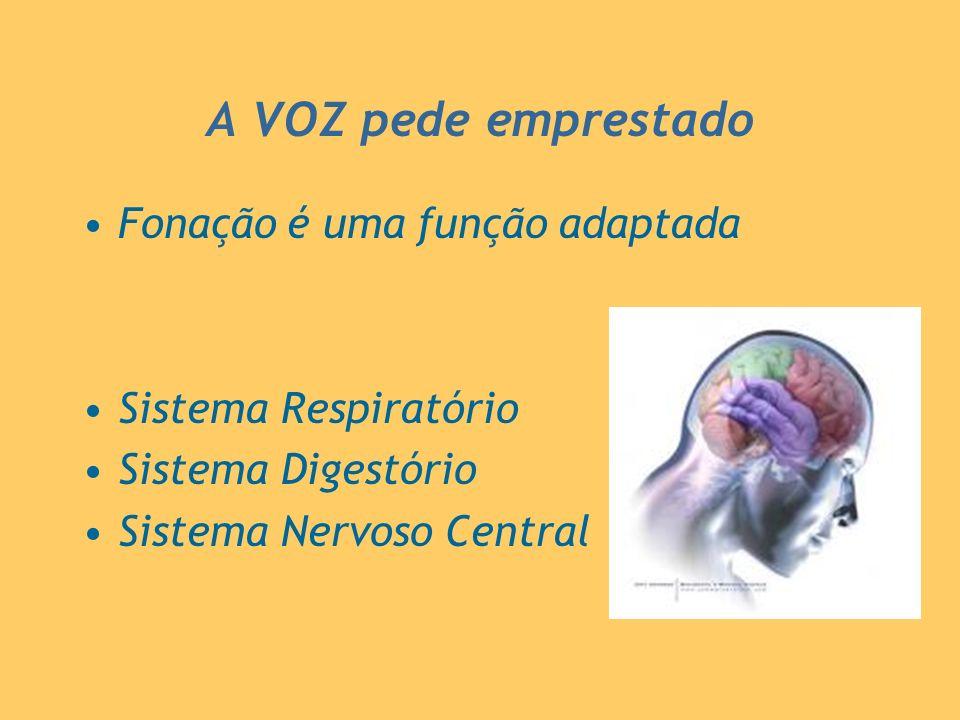 A VOZ pede emprestado Fonação é uma função adaptada
