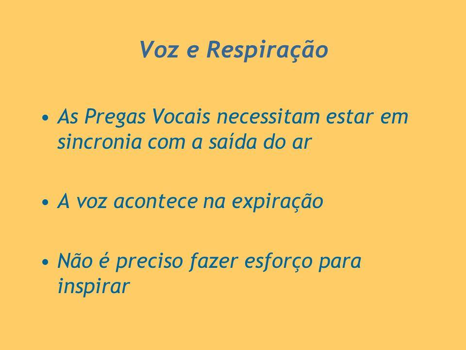 Voz e Respiração As Pregas Vocais necessitam estar em sincronia com a saída do ar. A voz acontece na expiração.