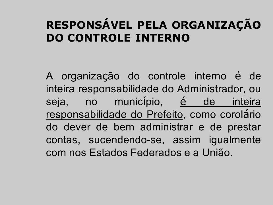 RESPONSÁVEL PELA ORGANIZAÇÃO DO CONTROLE INTERNO