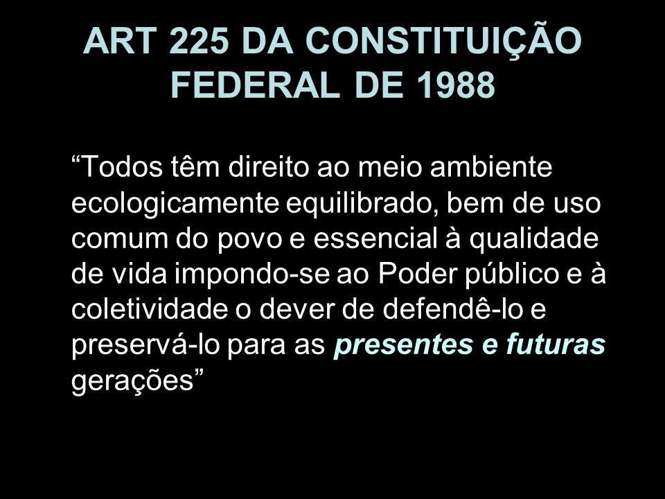 ART 225 DA CONSTITUIÇÃO FEDERAL DE 1988