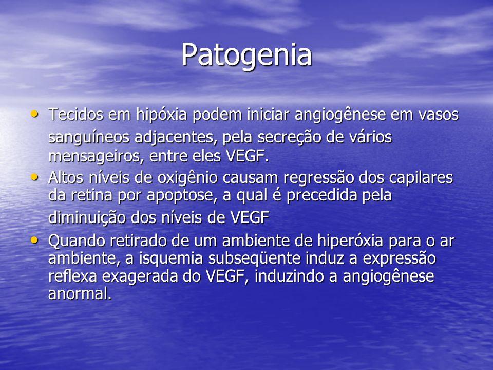 Patogenia Tecidos em hipóxia podem iniciar angiogênese em vasos sanguíneos adjacentes, pela secreção de vários mensageiros, entre eles VEGF.