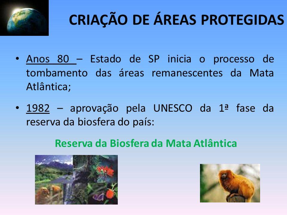 Reserva da Biosfera da Mata Atlântica