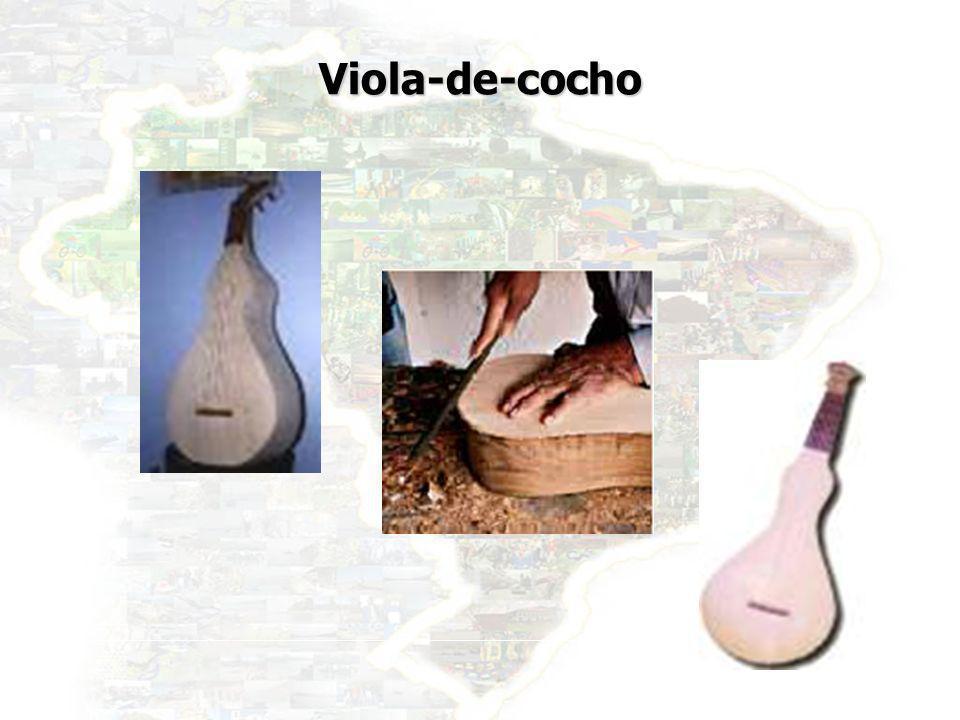 Viola-de-cocho
