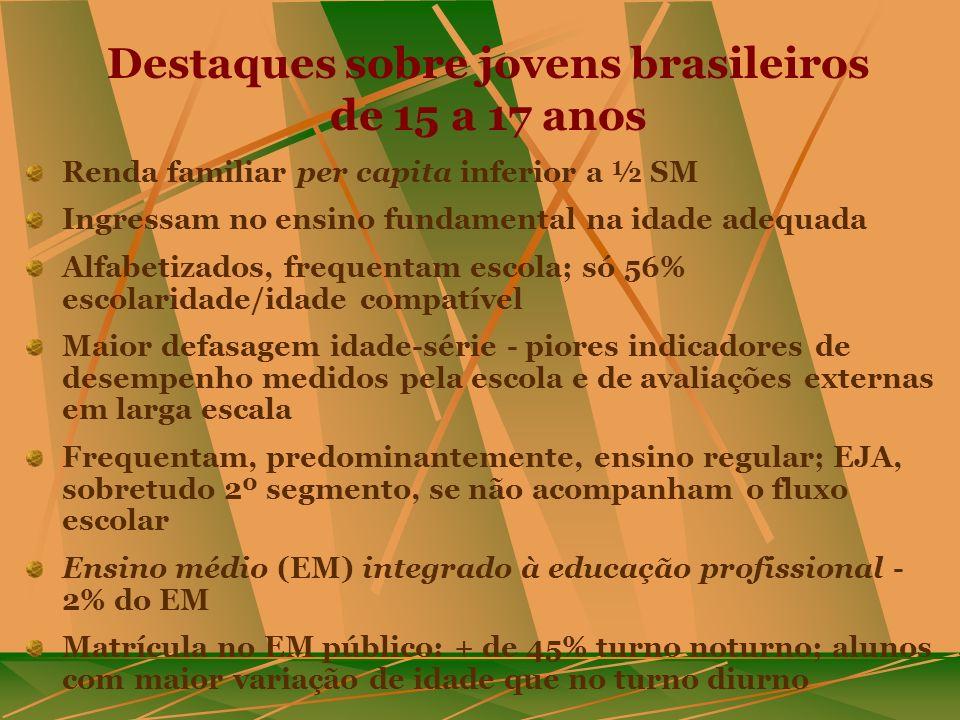 Destaques sobre jovens brasileiros de 15 a 17 anos