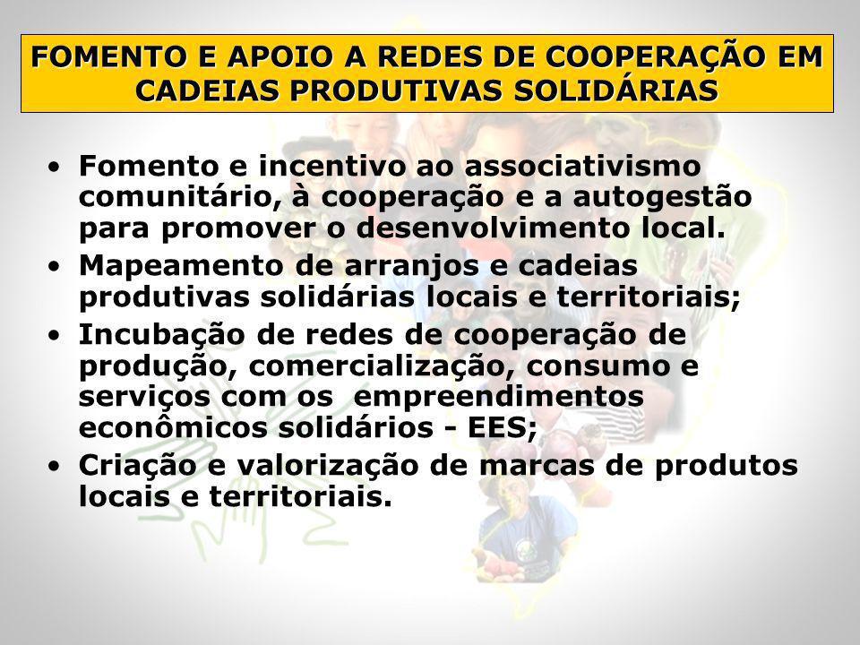 FOMENTO E APOIO A REDES DE COOPERAÇÃO EM CADEIAS PRODUTIVAS SOLIDÁRIAS