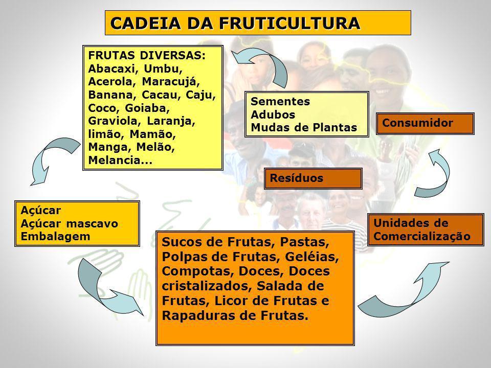 CADEIA DA FRUTICULTURA