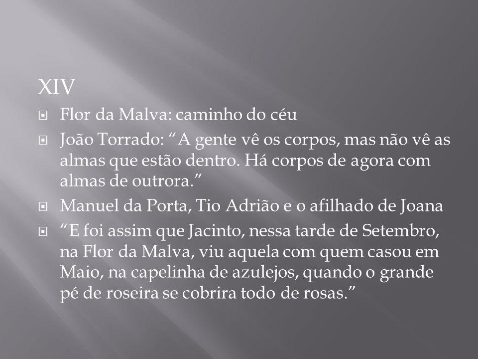 XIV Flor da Malva: caminho do céu