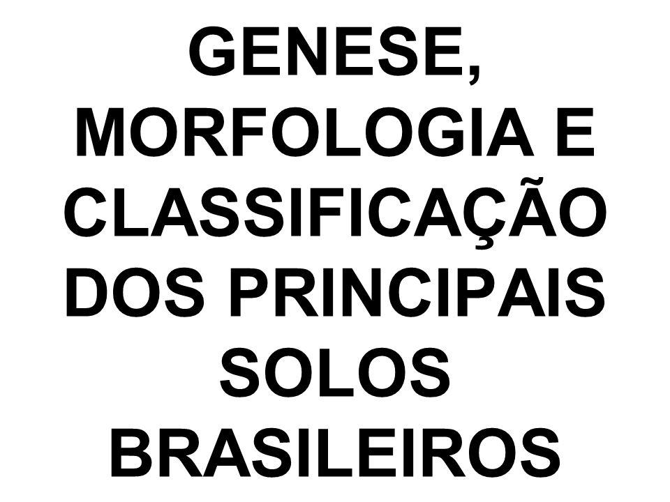 GENESE, MORFOLOGIA E CLASSIFICAÇÃO DOS PRINCIPAIS SOLOS BRASILEIROS