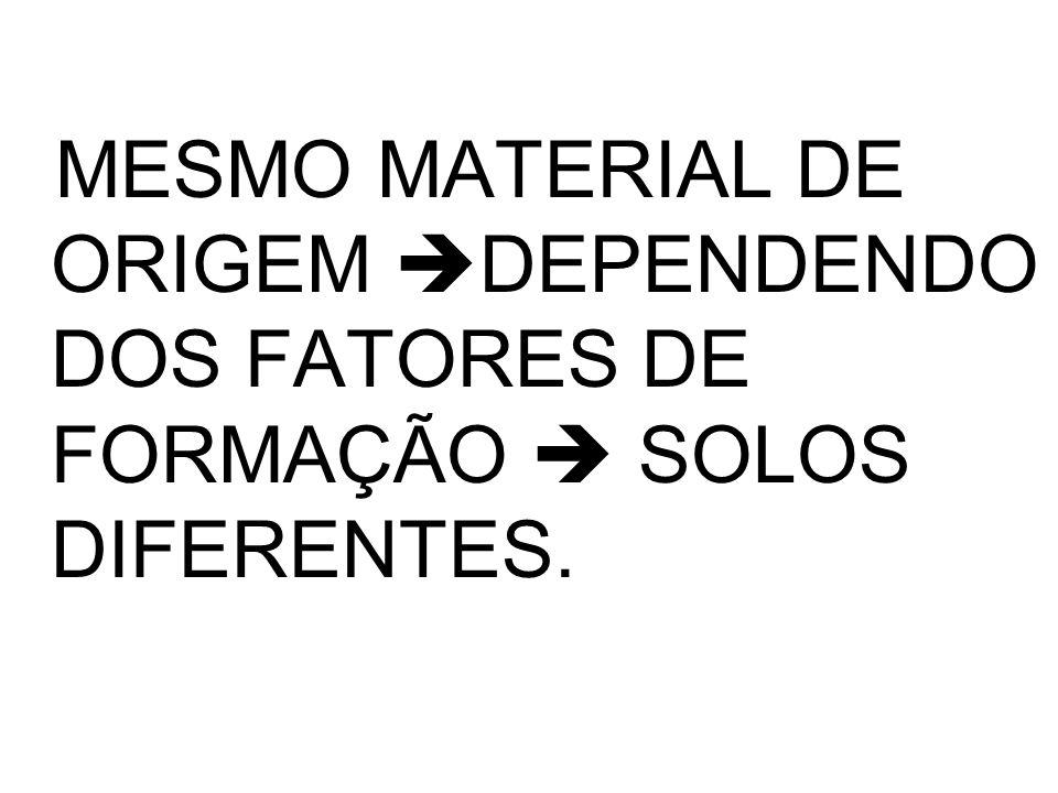 MESMO MATERIAL DE ORIGEM DEPENDENDO DOS FATORES DE FORMAÇÃO  SOLOS DIFERENTES.