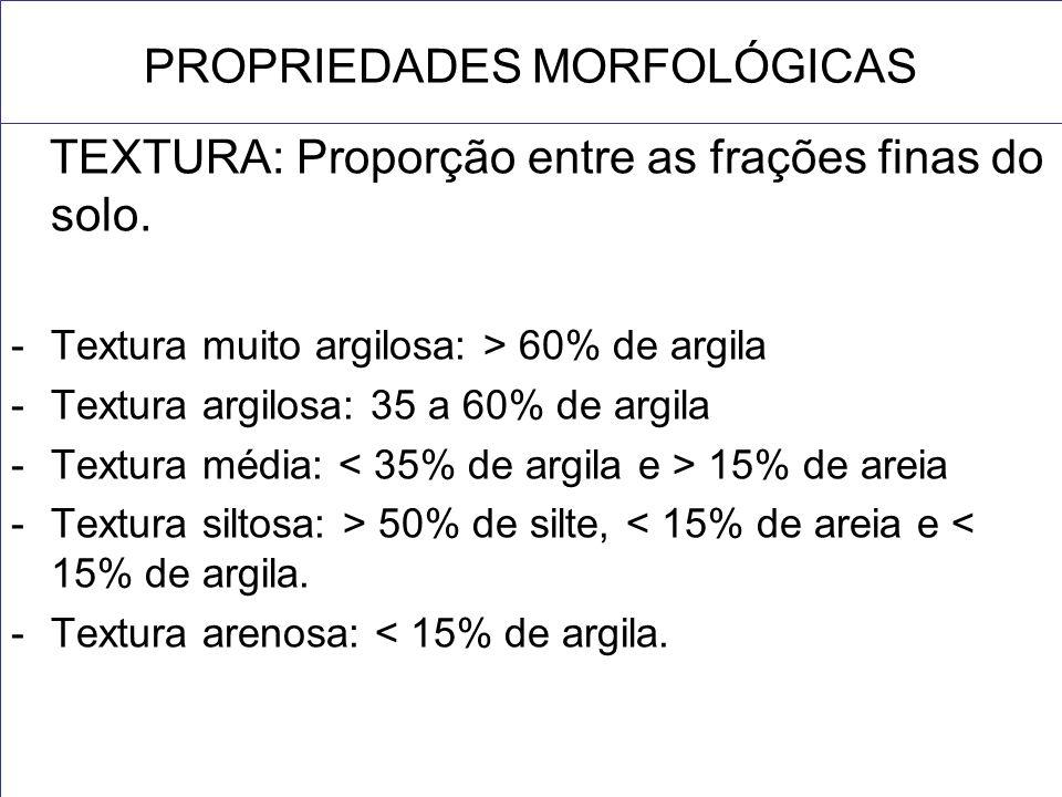 PROPRIEDADES MORFOLÓGICAS