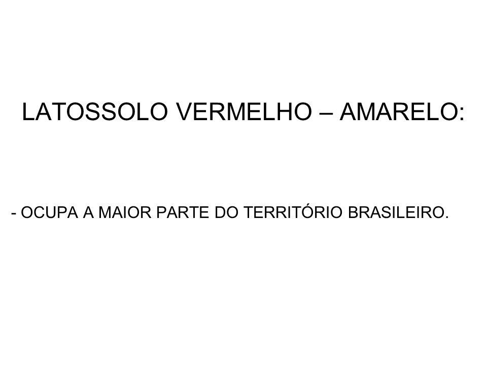 LATOSSOLO VERMELHO – AMARELO: