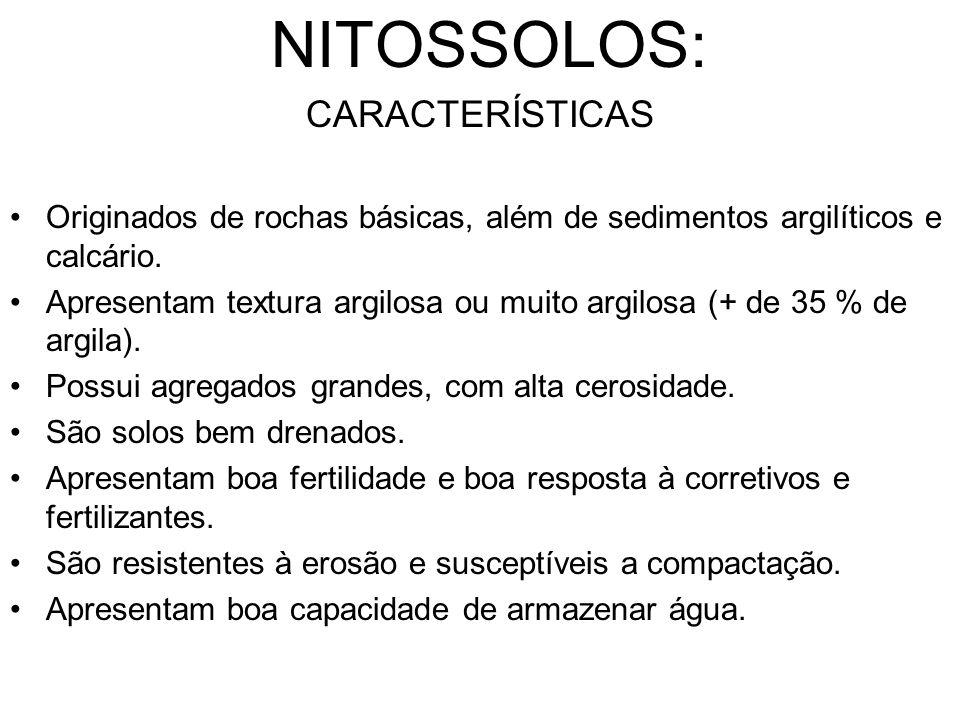 NITOSSOLOS: CARACTERÍSTICAS