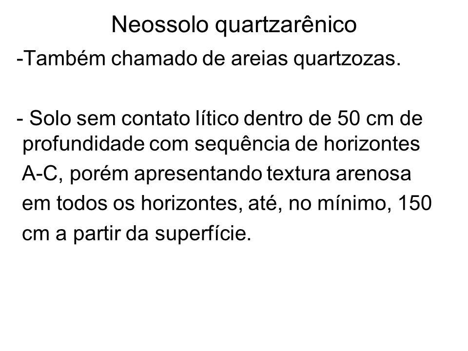 Neossolo quartzarênico