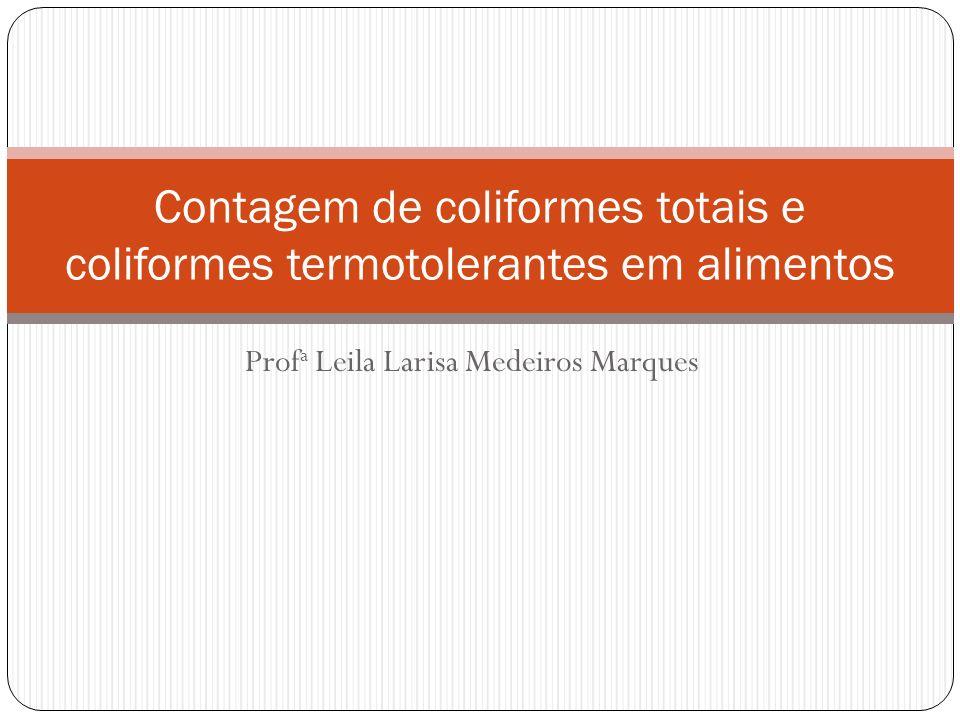 Profa Leila Larisa Medeiros Marques