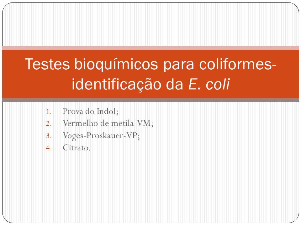 Testes bioquímicos para coliformes- identificação da E. coli