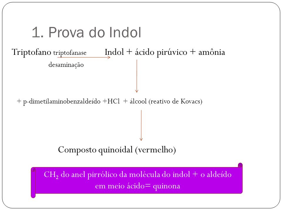 1. Prova do Indol