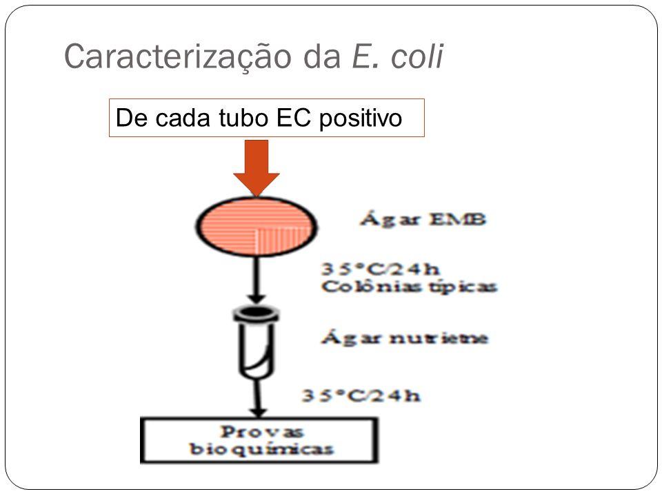 Caracterização da E. coli
