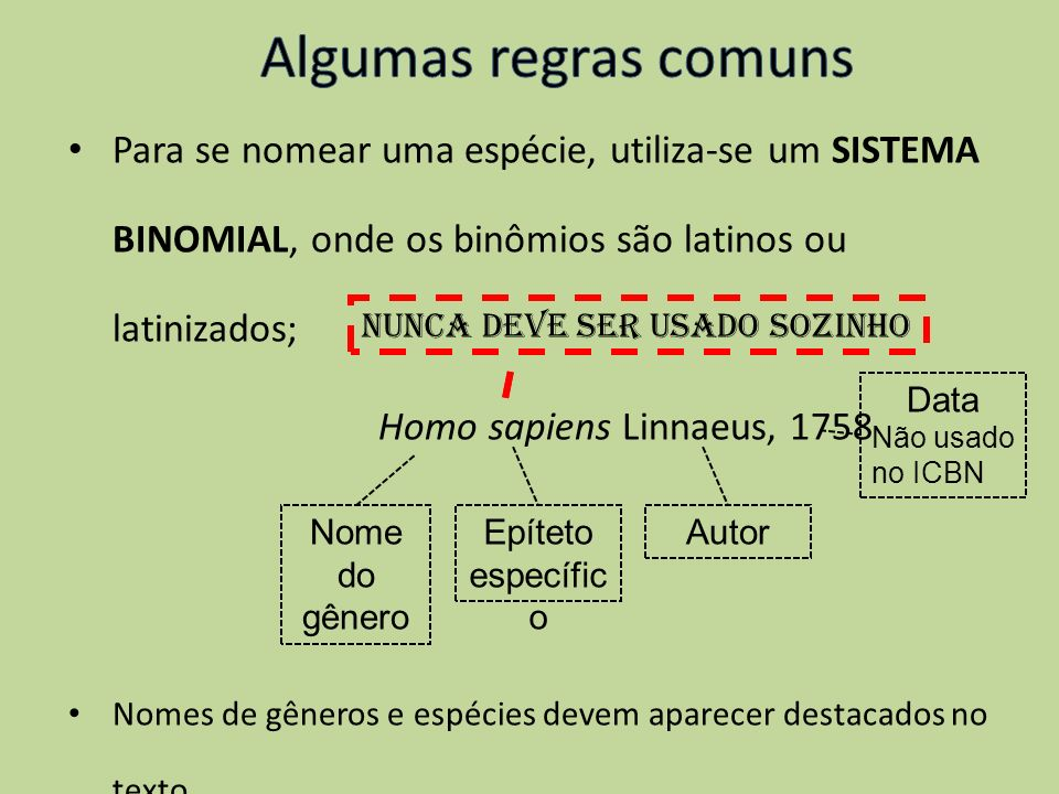 Algumas regras comuns Para se nomear uma espécie, utiliza-se um SISTEMA BINOMIAL, onde os binômios são latinos ou latinizados;