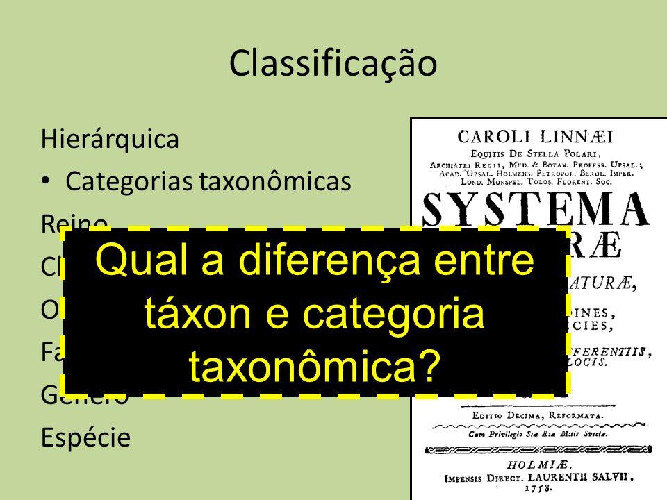 Qual a diferença entre táxon e categoria taxonômica