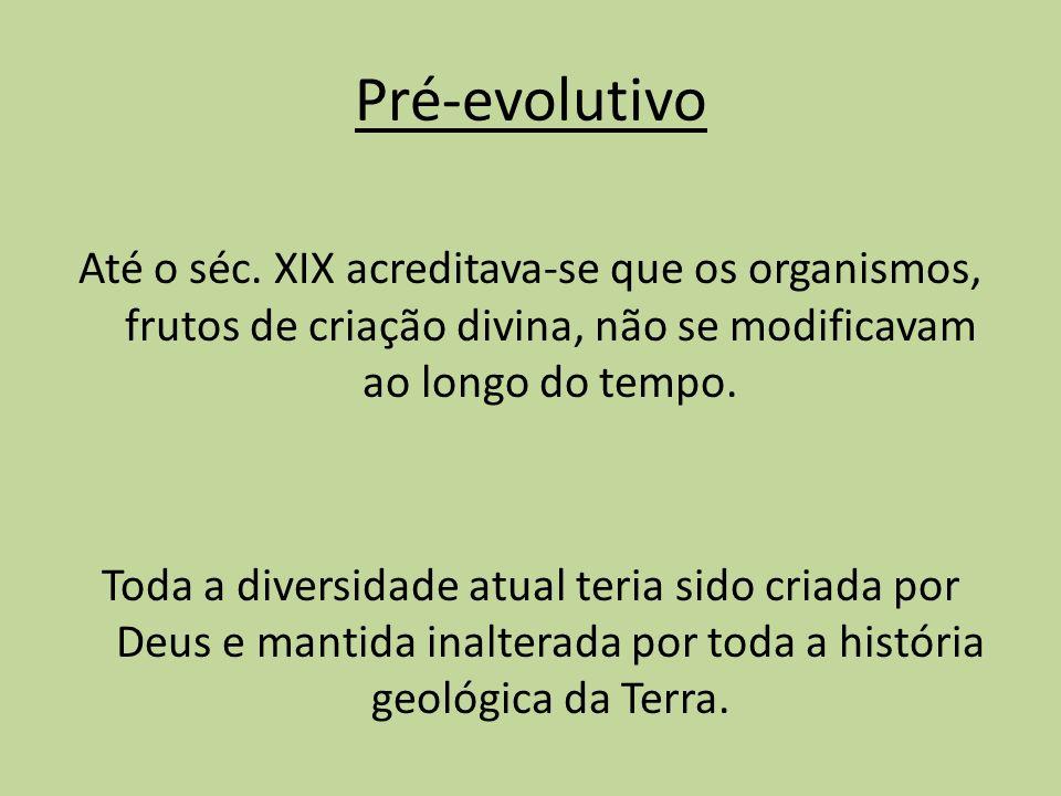 Pré-evolutivo Até o séc. XIX acreditava-se que os organismos, frutos de criação divina, não se modificavam ao longo do tempo.