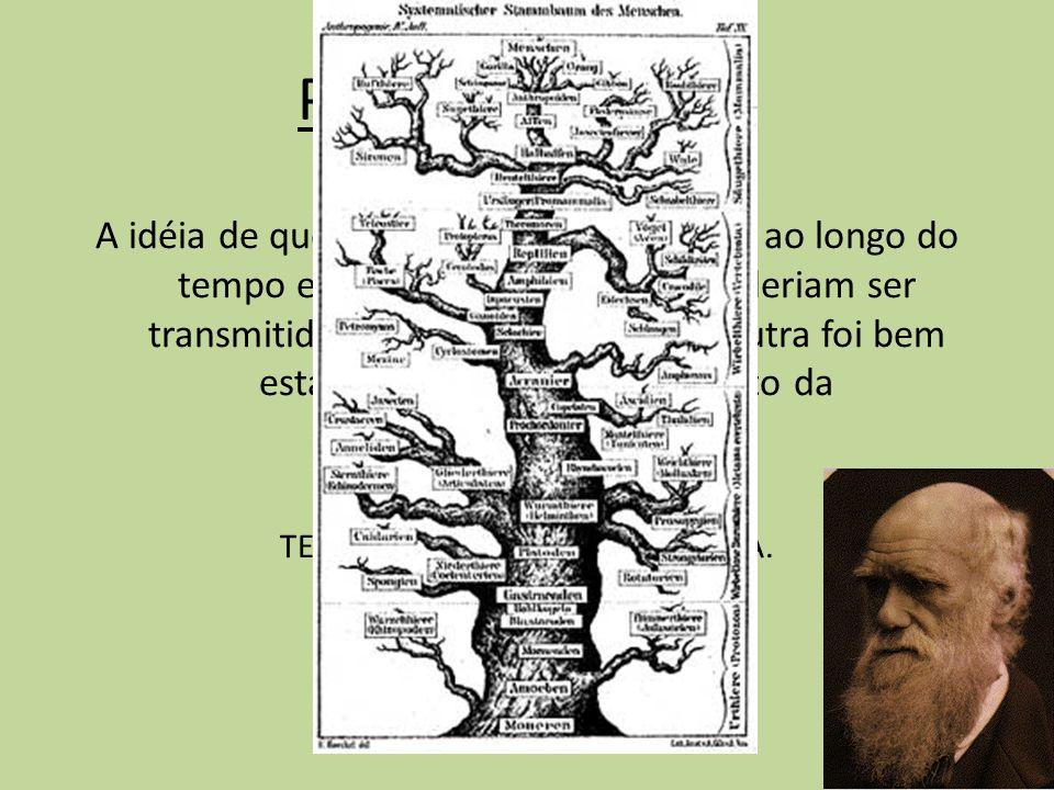 TEORIA DA EVOLUÇÃO BIOLÓGICA.