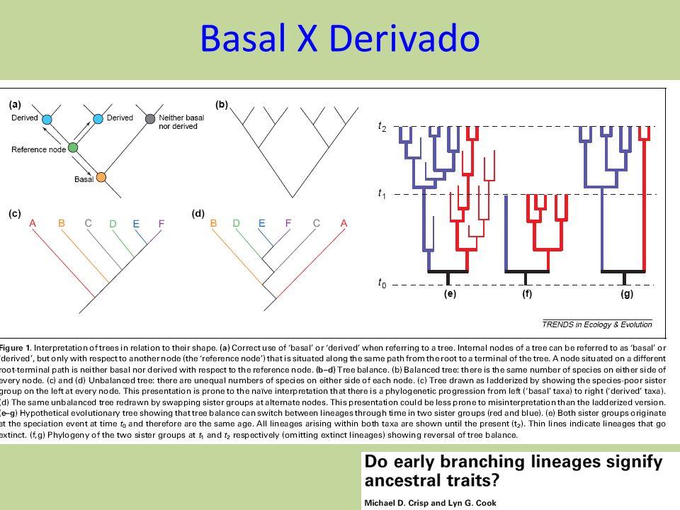 Basal X Derivado 25