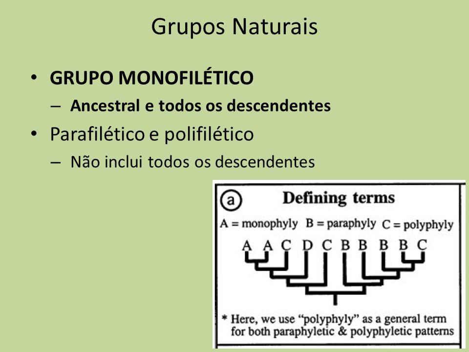 Grupos Naturais GRUPO MONOFILÉTICO Parafilético e polifilético