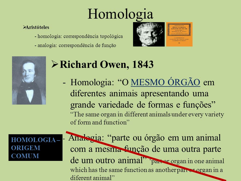 Homologia Richard Owen, 1843