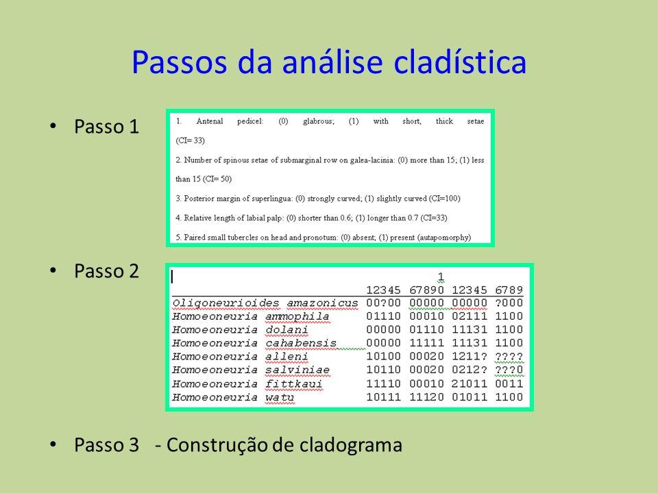 Passos da análise cladística