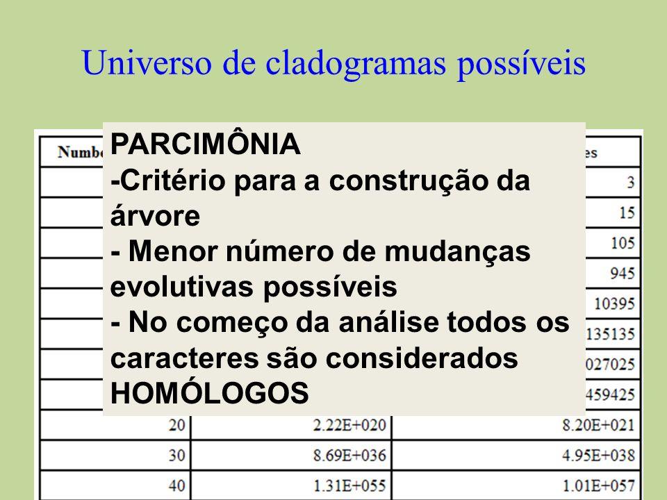 Universo de cladogramas possíveis