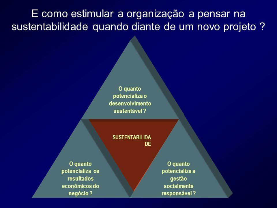 E como estimular a organização a pensar na sustentabilidade quando diante de um novo projeto