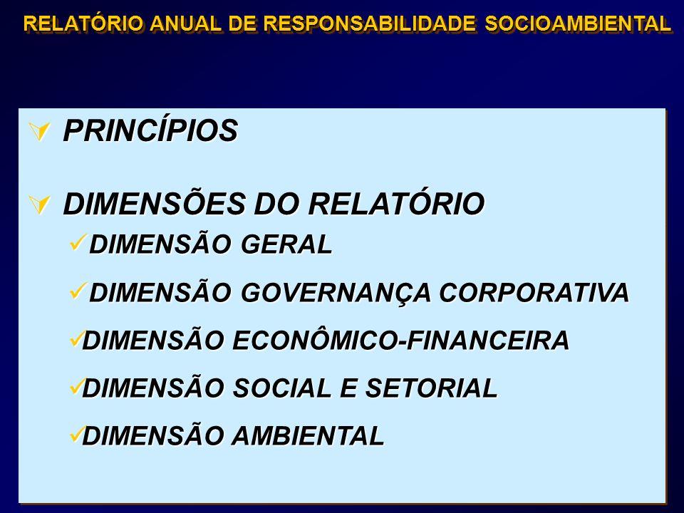 DIMENSÕES DO RELATÓRIO
