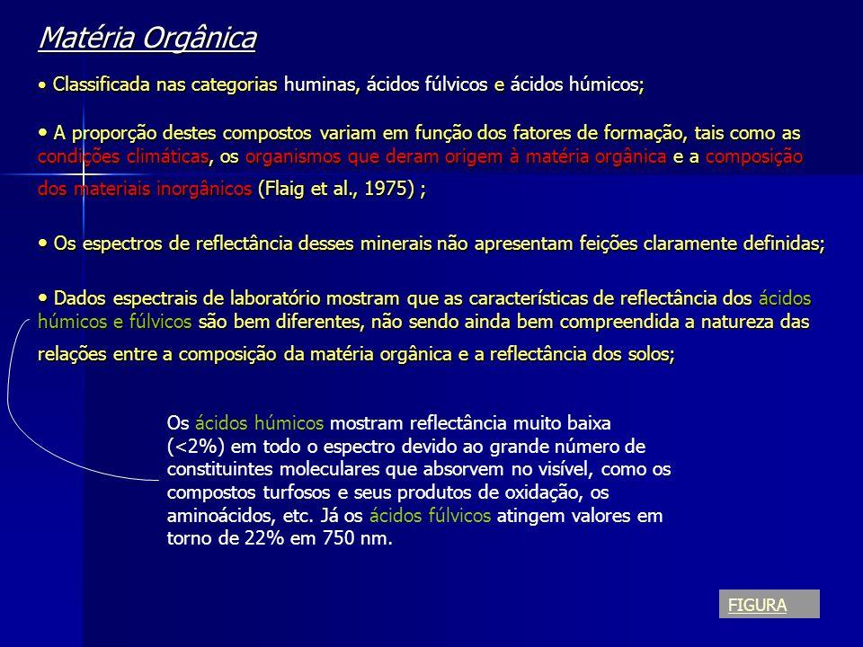 Matéria Orgânica Classificada nas categorias huminas, ácidos fúlvicos e ácidos húmicos;