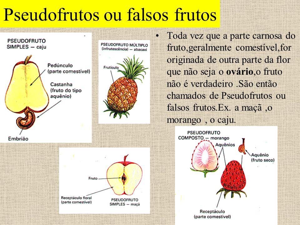 Pseudofrutos ou falsos frutos