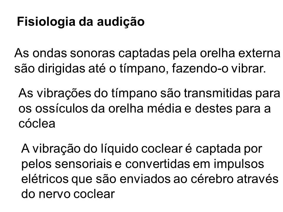 Fisiologia da audiçãoAs ondas sonoras captadas pela orelha externa. são dirigidas até o tímpano, fazendo-o vibrar.