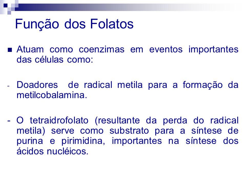 Função dos FolatosAtuam como coenzimas em eventos importantes das células como: Doadores de radical metila para a formação da metilcobalamina.